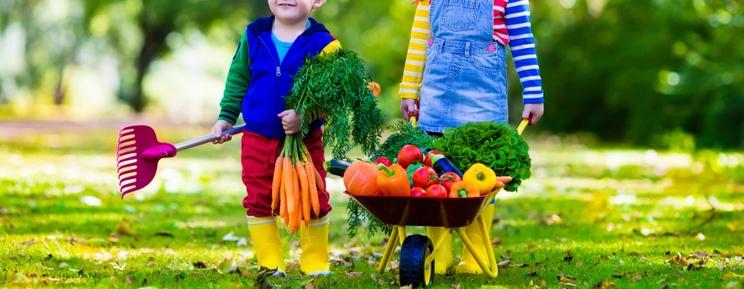 retour du potager avec les enfants